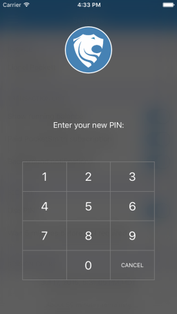 PIN number